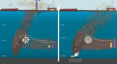 (الصورة: ناتالي رينيه ، معهد وودز هول لعلوم المحيطات)