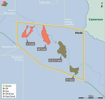 Alguns dos blocos offshore de Camarões (Imagem: New Age)