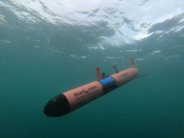 Image courtesy Blue Ocean Seismic Services