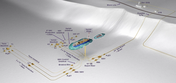 Karish and Tanin fields are operated by Energean / The image shows the fields' development plan - Credit: Energean