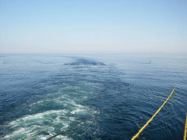 Marine Seismic Streamers / Image by DedMityay - AdobeStock
