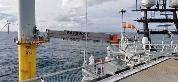 Photo: Safeway