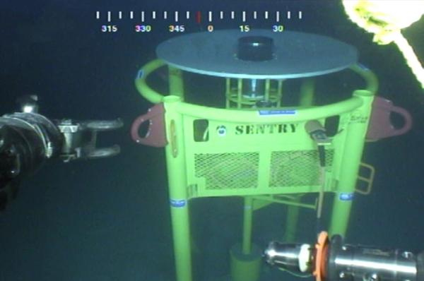 Sonardyne's Sentry IMS in the US Gulf of Mexico (Photo: Sonardyne)