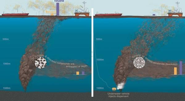 (Imagen: Natalie Renier, Institución Oceanográfica Woods Hole)